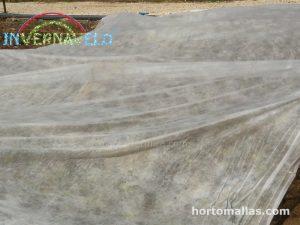 protege tus cultivos ante bajas temperaturas manta agrícola