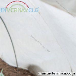 Micro túnel con manta térmica invernavelo cubriendo plantas